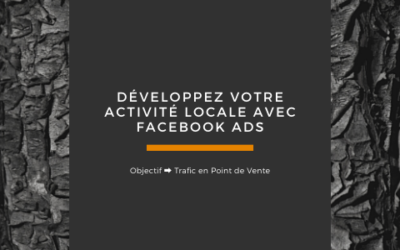 Promouvoir votre entreprise locale avec Facebook Ads [2020]