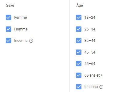 Age et sexe donne démographique Google Ads