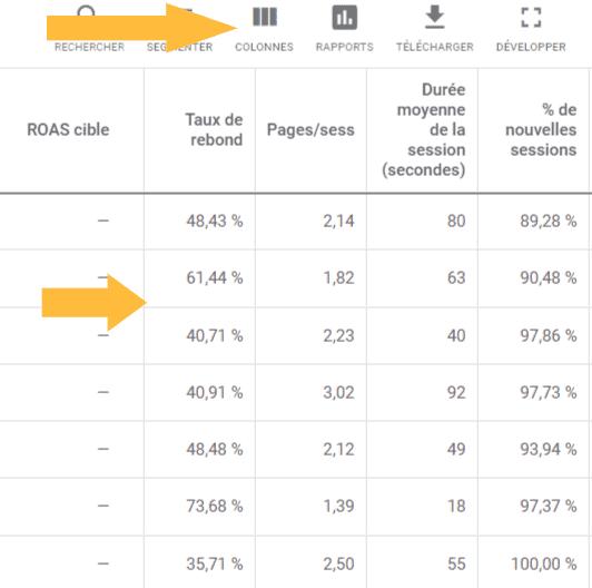 Analyse Google Ads avec indicateurs google analytics